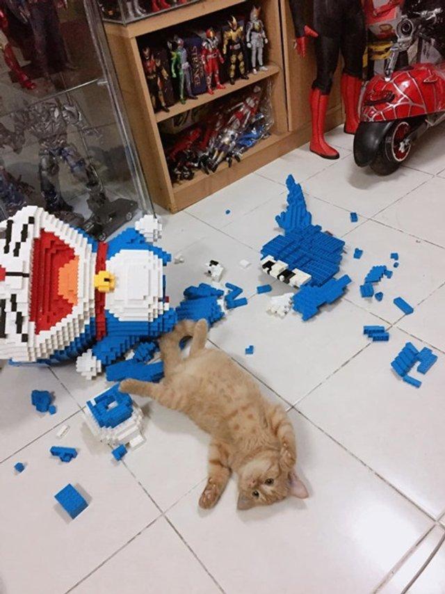 Кіт-бешкетник зламав фігуру з 2432 деталей конструктора - фото 377814