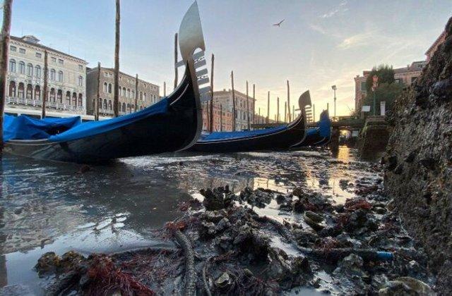 У Венеції аномально впав рівень води в каналах: вражаючі фото - фото 379682