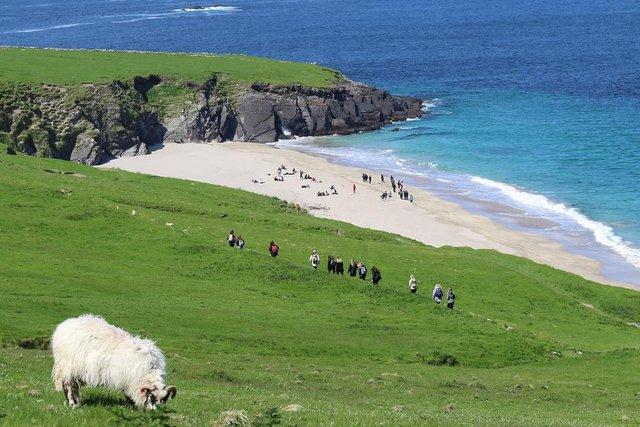 Ірландський острів шукає двох людей, які безкоштовно будуть на ньому жити - фото 381287