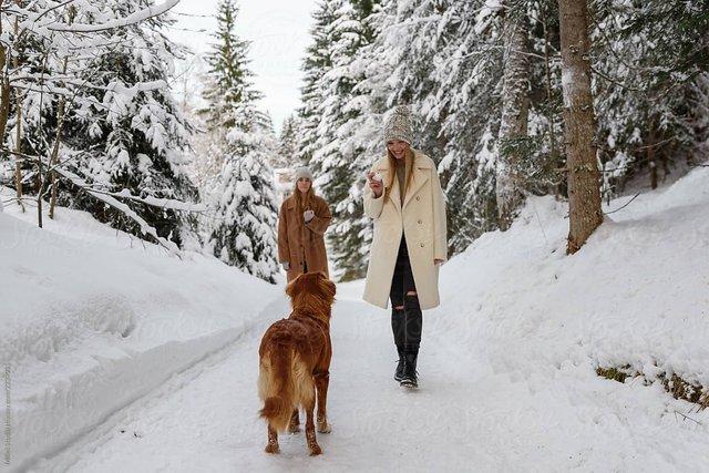 Не лінуйтесь взимку виходити з дому - фото 383901