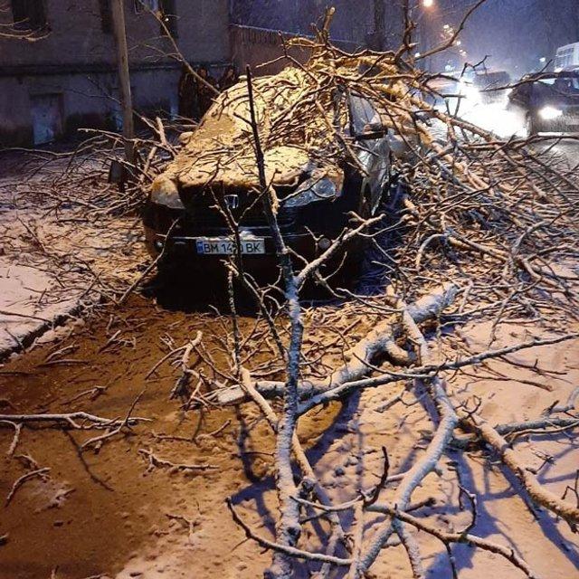 У мережі показали наслідки сніжної негоди в Україні - фото 384422