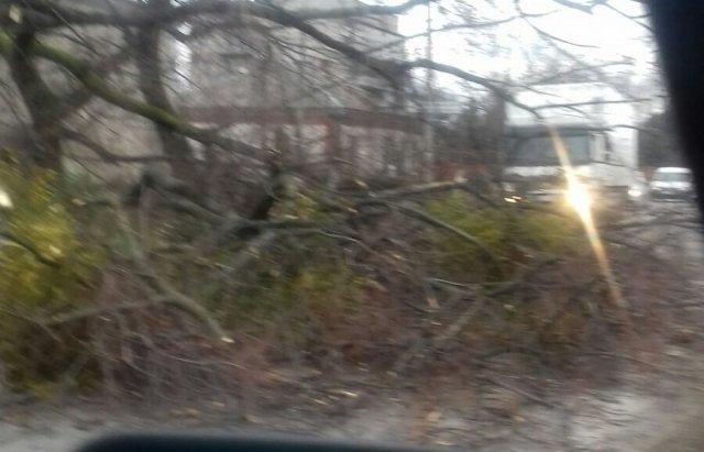У мережі показали наслідки сніжної негоди в Україні - фото 384423
