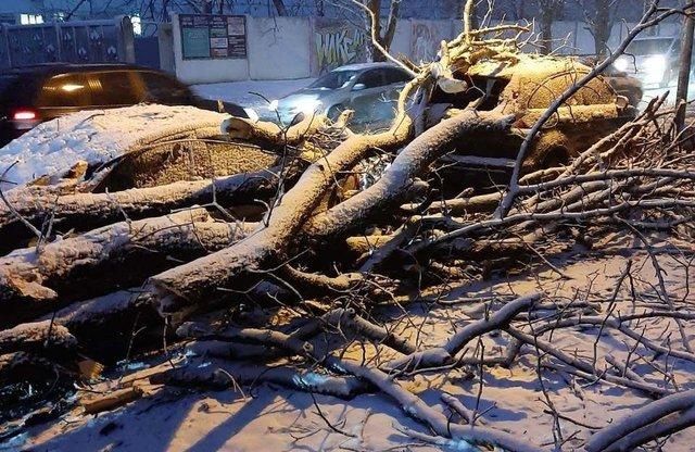 У мережі показали наслідки сніжної негоди в Україні - фото 384426