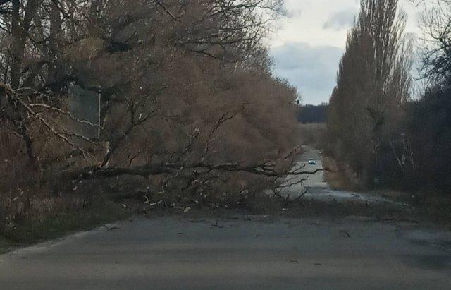 У мережі показали наслідки сніжної негоди в Україні - фото 384427