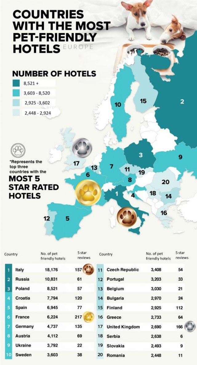 Названо найкращі європейські країни для подорожі з тваринами - фото 384842