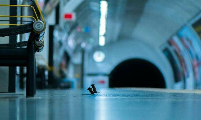 Сварка на станції - фото 385530