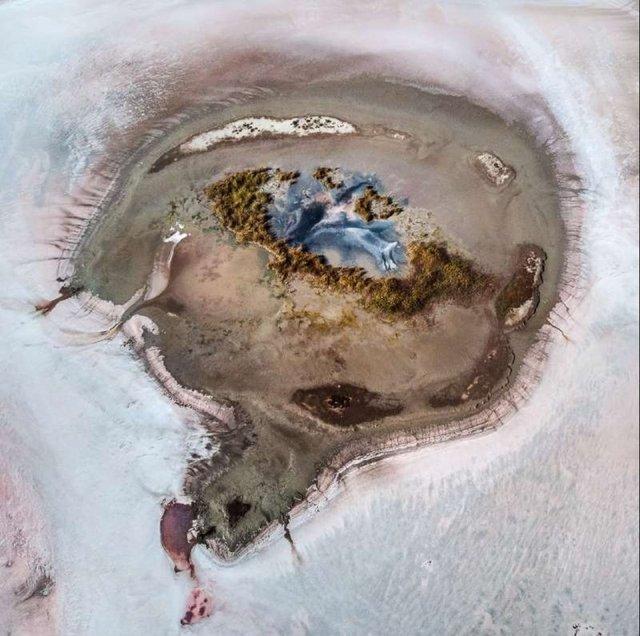 Рожева планета в Україні: дивовижні фото озера на Херсонщині вас вразять - фото 386854