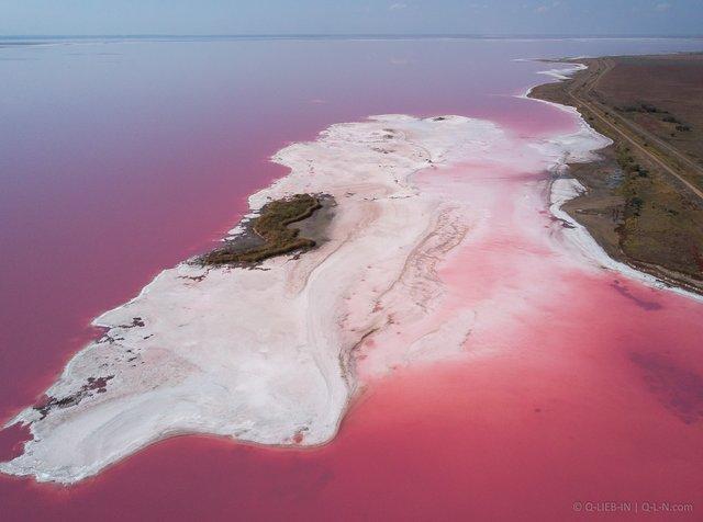 Рожева планета в Україні: дивовижні фото озера на Херсонщині вас вразять - фото 386859