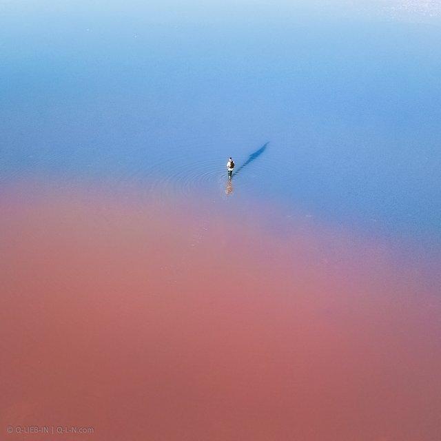 Рожева планета в Україні: дивовижні фото озера на Херсонщині вас вразять - фото 386865