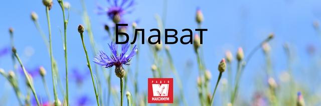 10 наймилозвучніших слів в українській мові, які ми рідко вживаємо - фото 387413