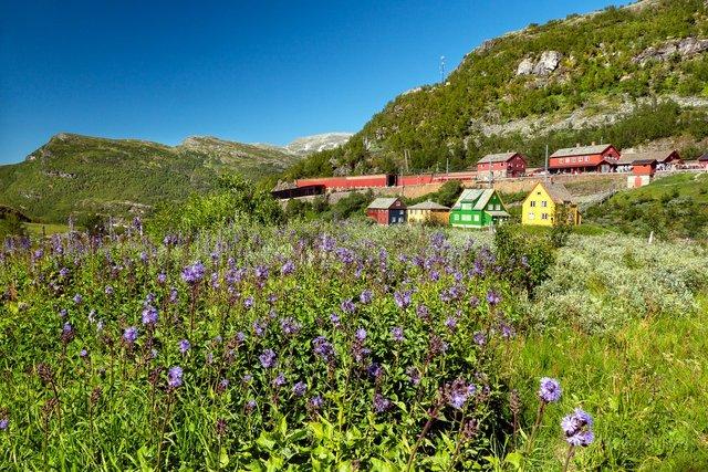 Яскраві фото Норвегії, які надихають на мандри - фото 388593