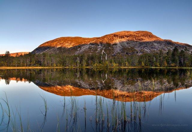 Яскраві фото Норвегії, які надихають на мандри - фото 388596