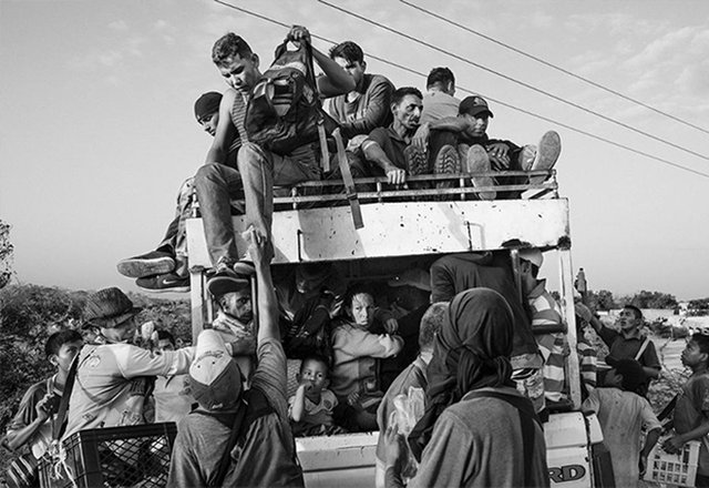 Фотографії, що вражають: названі фіналісти World Press Photo 2020 - фото 388610