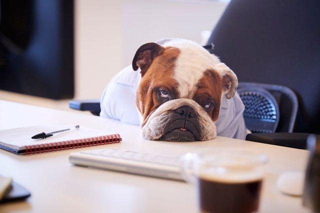 Невпевненість у роботі негативно впливає на психологічний стан - фото 388740