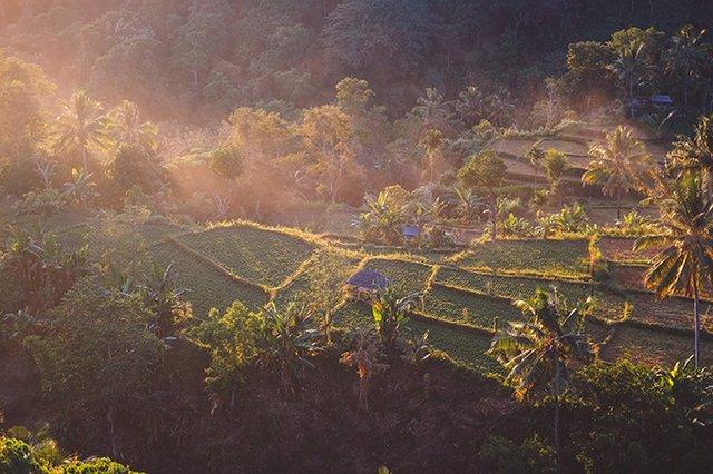 TripAdvisor назвав найкращі туристичні напрямки 2020 року - фото 388795