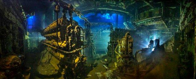 Названо переможців конкурсу підводної зйомки: кадри заворожують - фото 389090