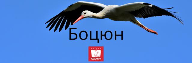 10 колоритних українських слів про весну, які збагатять ваше мовлення - фото 391162