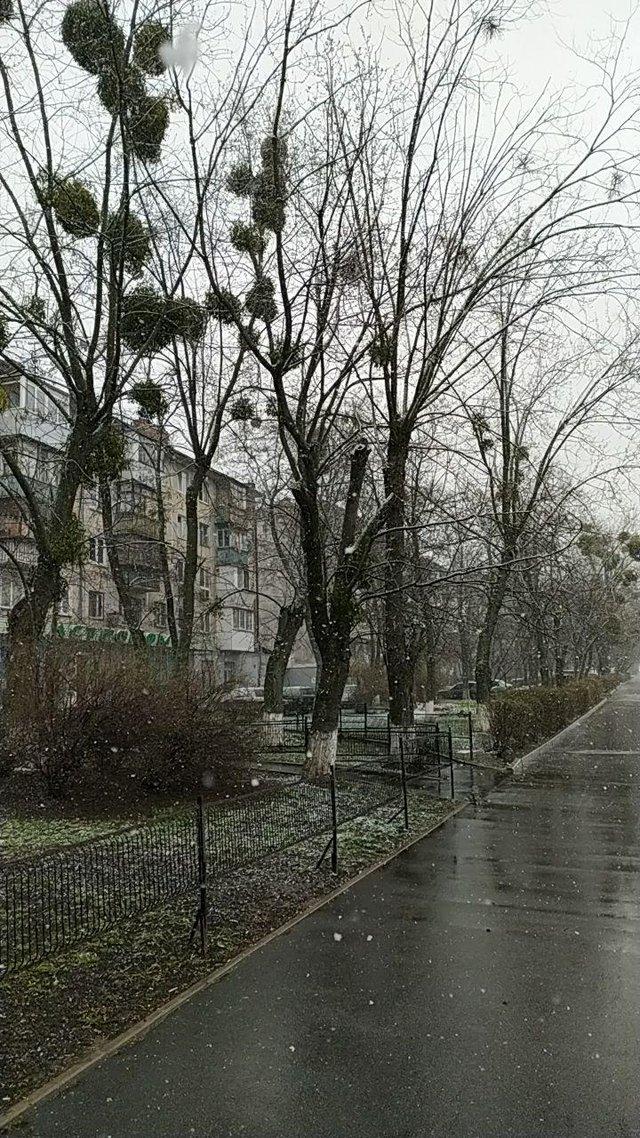 Україну засипало снігом: фото і відео аномалії - фото 393526