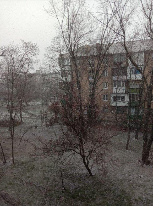 Україну засипало снігом: фото і відео аномалії - фото 393527