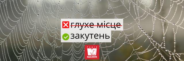 10 українських слів, які дуже влучно описують карантин - фото 393999