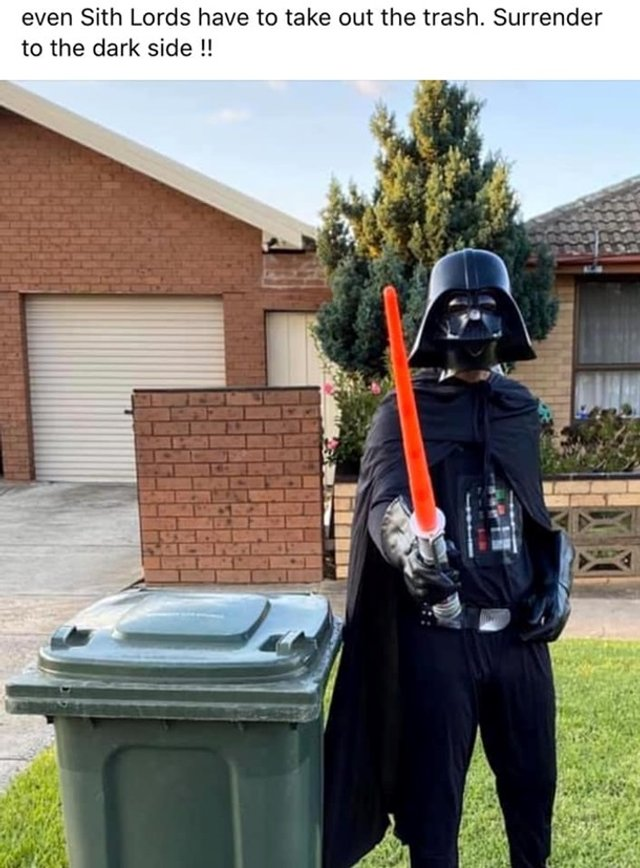 Австралійці влаштували флешмоб-маскарад біля сміттєвого бака - фото 397112