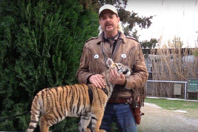 Король тигрів: новий документальний серіал, який став хітом Netflix - фото 397228