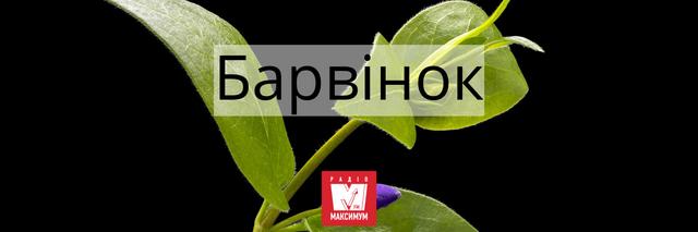 10 українських слів про Великдень, які подарують святковий настрій - фото 398311