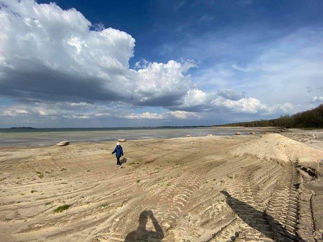 Озеро Світязь критично обміліло і стало схожим на пустелю: фото - фото 400576