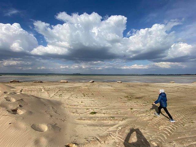 Озеро Світязь критично обміліло і стало схожим на пустелю: фото - фото 400578