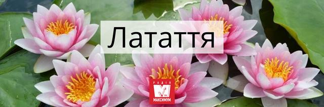 Говори красиво: 10 українських назв квітів, які милують око - фото 400897