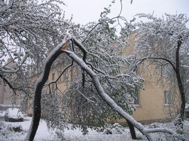 Європу засипало снігом: епічні фото - фото 403550
