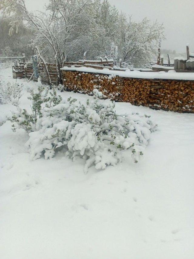 Європу засипало снігом: епічні фото - фото 403554