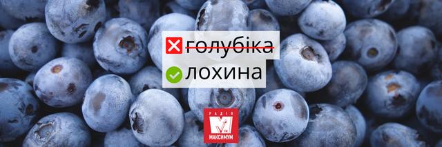 Не клубніка і не клюква: правильні назви улюблених ягід українською - фото 408048