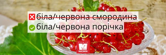 Не клубніка і не клюква: правильні назви улюблених ягід українською - фото 408050