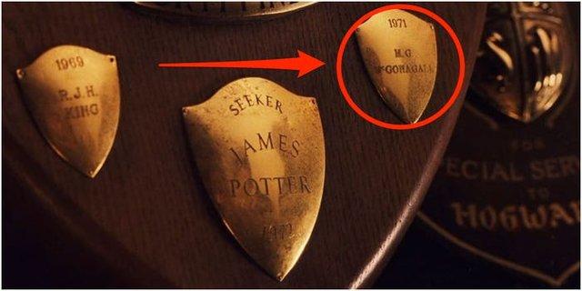 20 прихованих деталей у фільмах про Гаррі Поттера, на які ви не звернули увагу - фото 409035