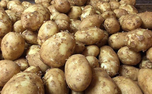 Картопляний крохмаль не любить холоду - фото 409523