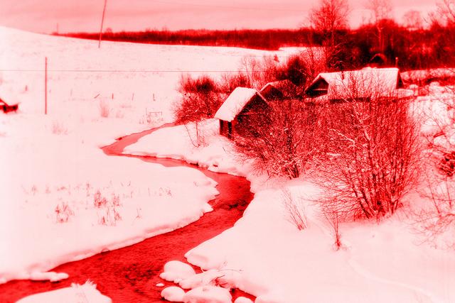 Фотограф показав світ в інфрачервоній зйомці - фото 410980