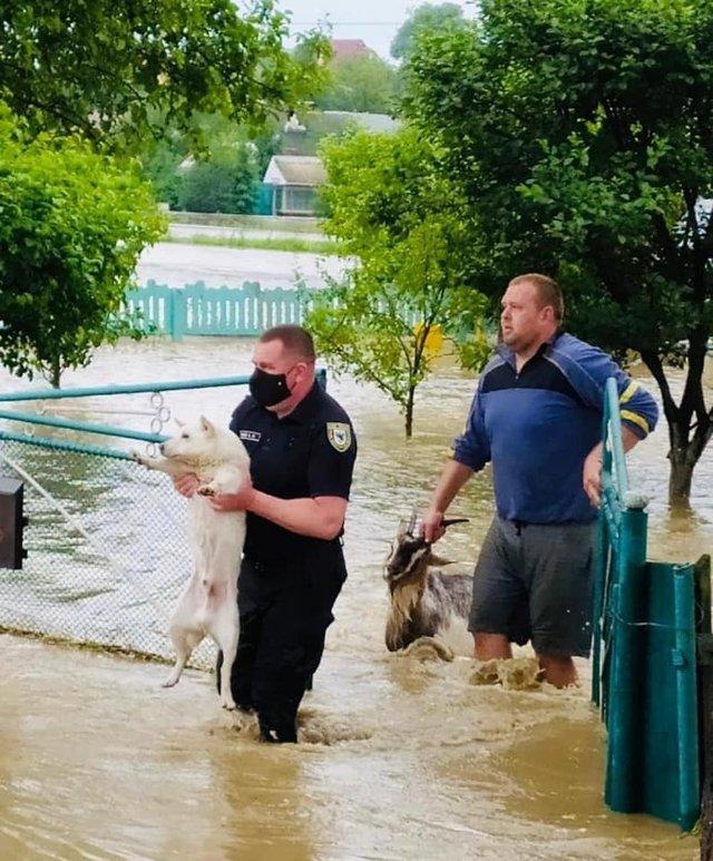 Шокуючі фото та відео негоди в Україні: як виглядають затоплені вулиці та подвір'я - фото 411699