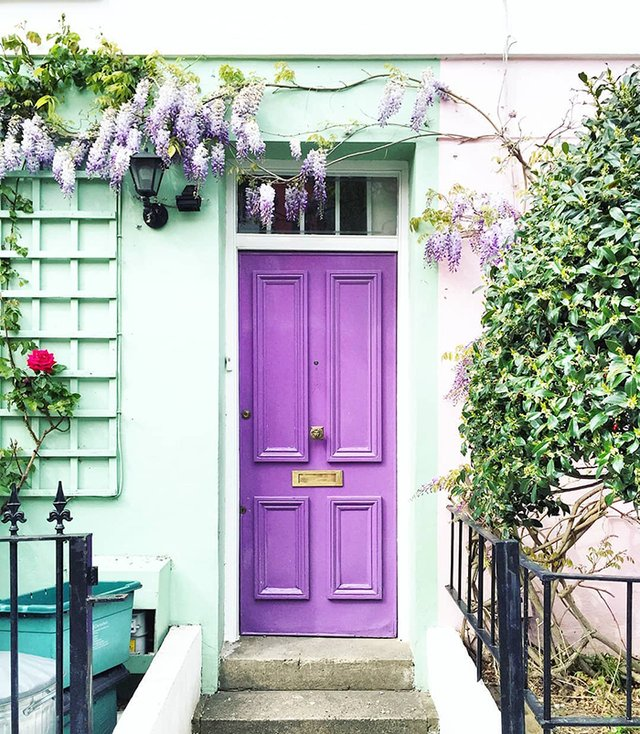 Квітучі помешкання Лондона, які приковують погляд (фото) - фото 411721