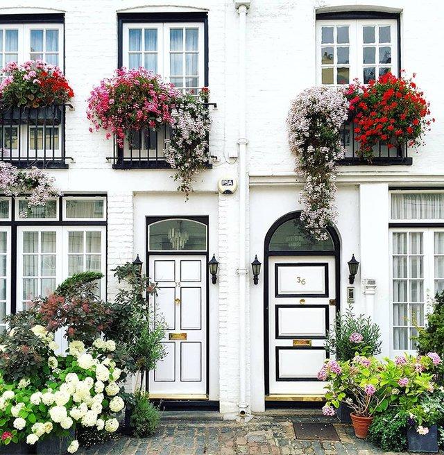 Квітучі помешкання Лондона, які приковують погляд (фото) - фото 411724