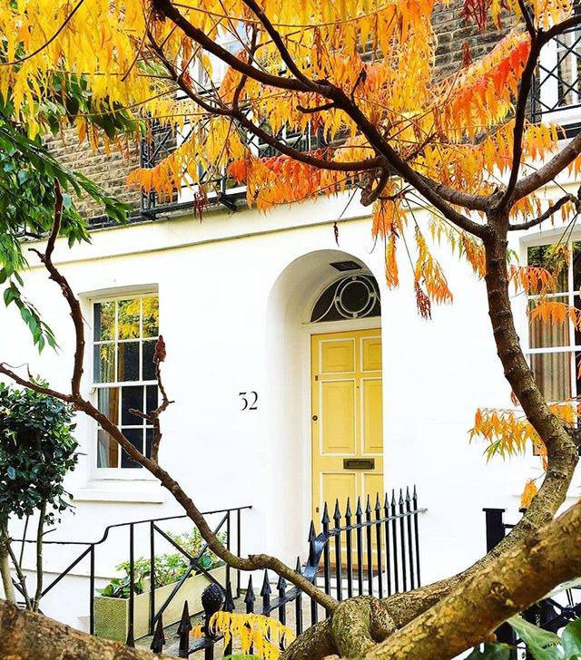 Квітучі помешкання Лондона, які приковують погляд (фото) - фото 411731