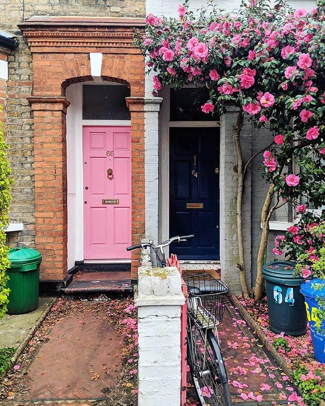 Квітучі помешкання Лондона, які приковують погляд (фото) - фото 411742
