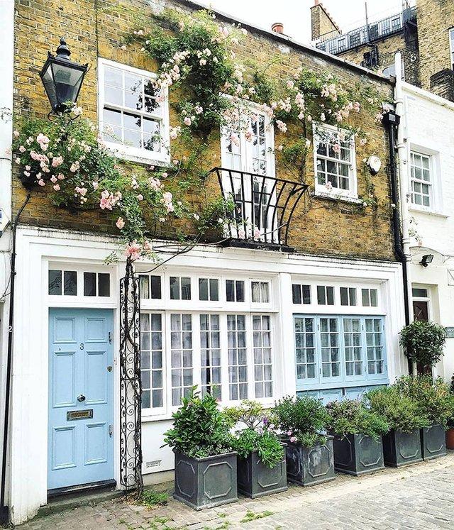 Квітучі помешкання Лондона, які приковують погляд (фото) - фото 411743