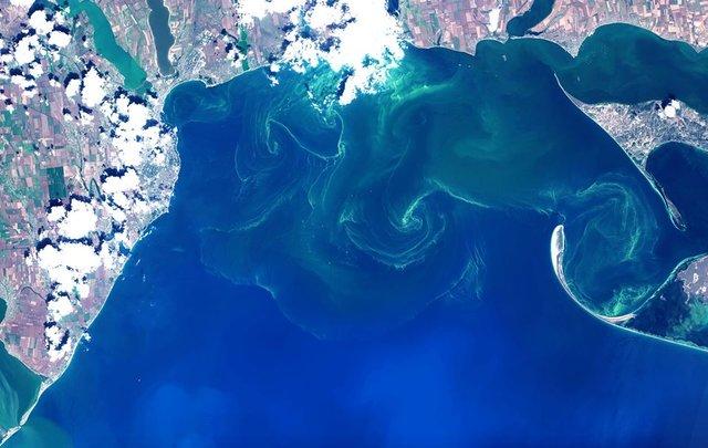 Чорне море знову стало зеленим: у мережі діляться знімками незвичайного явища - фото 413126