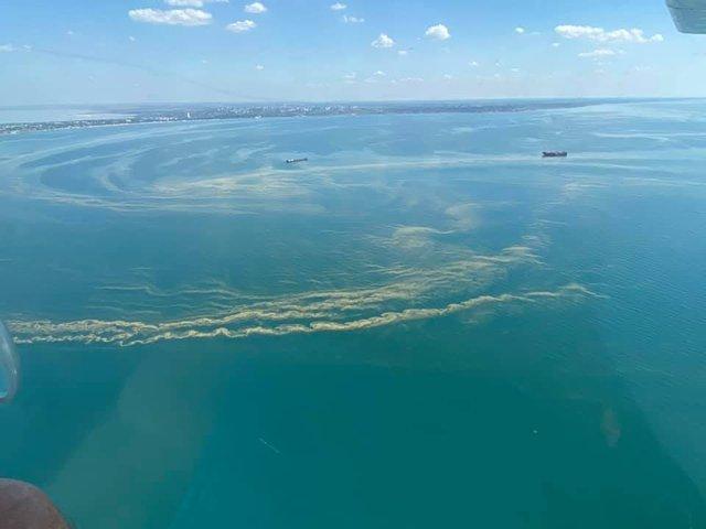 Чорне море знову стало зеленим: у мережі діляться знімками незвичайного явища - фото 413127
