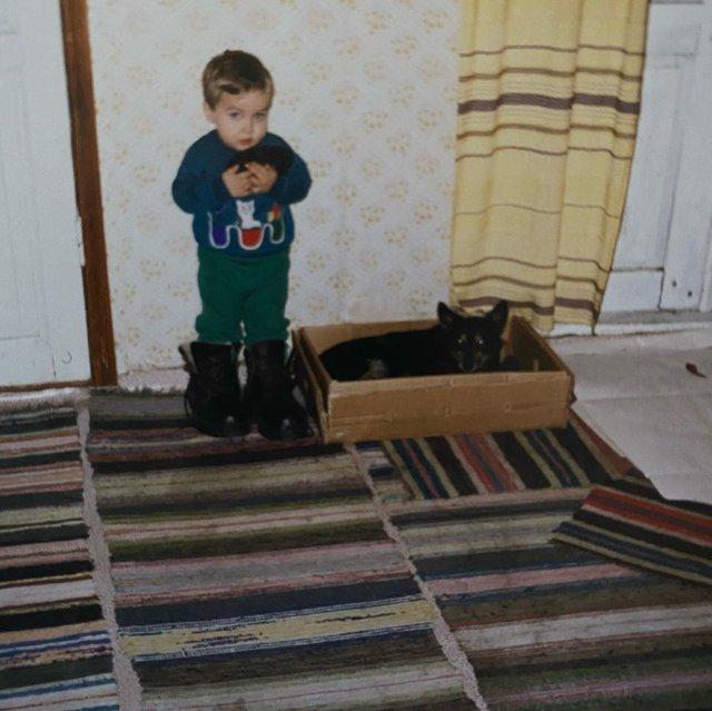 Лабрадор Melovina і болонка Каменських: добірка зіркових песиків до Дня собак - фото 413653