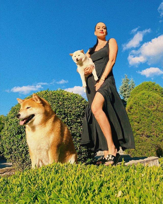 Лабрадор Melovina і болонка Каменських: добірка зіркових песиків до Дня собак - фото 413654