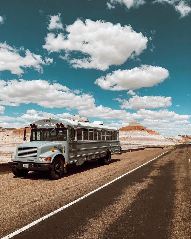 Пара із США перетворила старий шкільний автобус на атмосферний дім на колесах - фото 414237