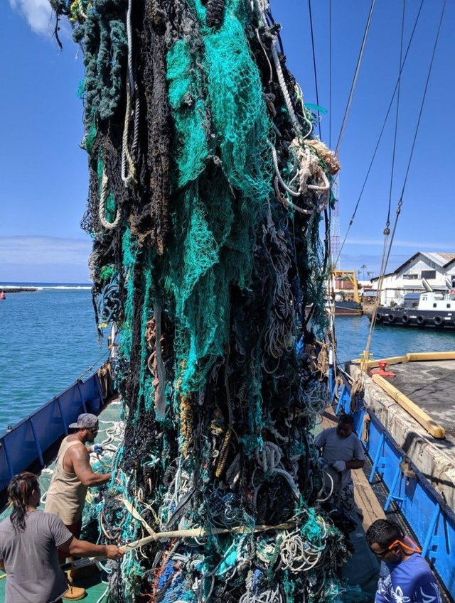 В океані відбулася наймасштабніша чистка від пластику - фото 414553
