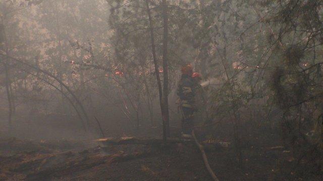 Рятувальники показали наслідки пожеж на Луганщині - фото 415079